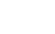 London Pet Photographer - London Pet photography