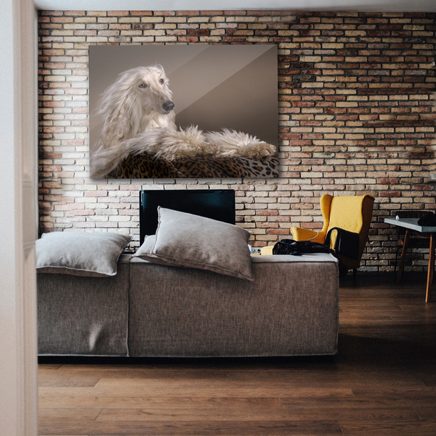 Bedford dog,cat and pet photography beautiful Wall Art - Fabulous Memories - Treasured Gifts